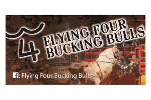 Flying Four Bucking Bulls